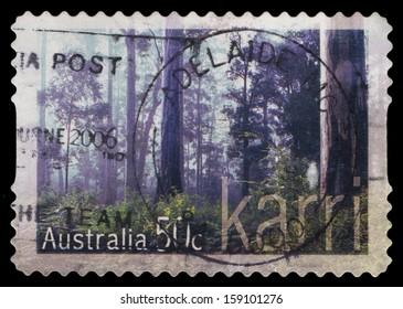 AUSTRALIA - CIRCA 2005: A stamp printed in Australia shows Forest-Karri, circa 2005