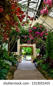 Australia, inside Conservatory, located in public Fitzroy Gardens, East Melbourne,