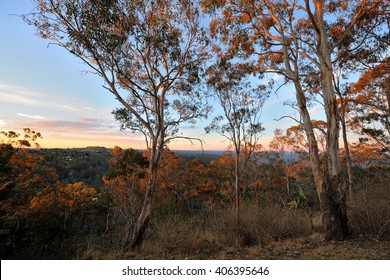 Australia Landscape, Toowoomba lookout at sunset
