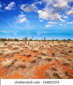 Australia, Outback landscape. Beautiful colors of earth and sky.