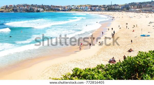 Australia People Bondie Beach Resort Near Parks Outdoor