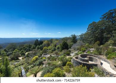Australia, Sydney Blue Mountain Botanical Garden