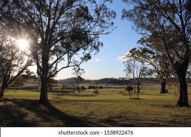 Australian countryside with gum trees and water at sunset