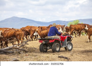Australian farmer on quad bike