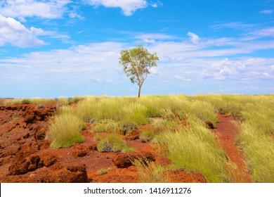 Australian Landscape outback desert roads bush kimberley palm river gorge geiki rock formations