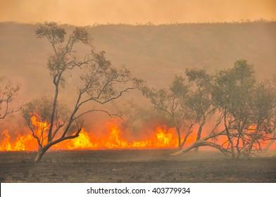 Australian outback bush fires