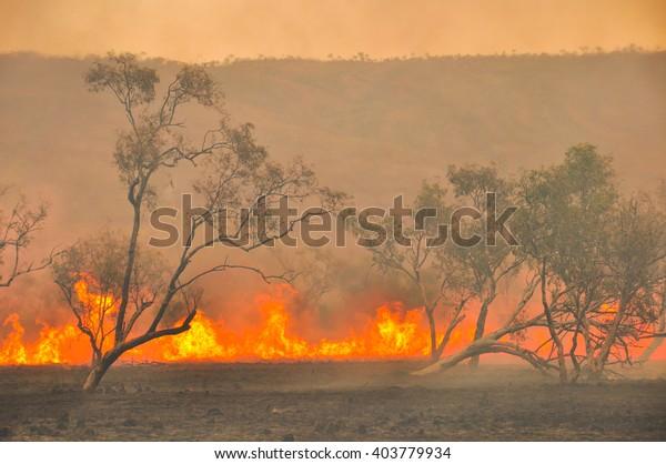 Australische Buschfeuer