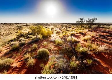 Australian outback in hot sunshine