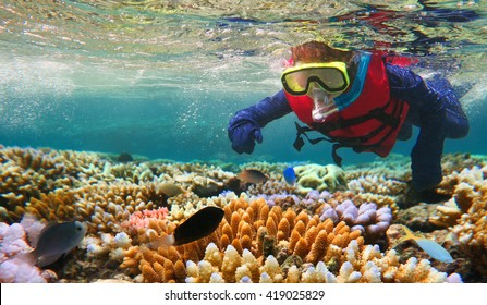 Australian person snorkeling scuba diving with life jacket vest and Lycra protection suit at the Great Barrier Reef in the tropical far north of Queensland, Australia. Real people. Copy space