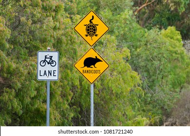 Australian Road signs to protect Long necked Tortoise, Bandicoots. Yellow warning signs in Albany, Western Australia