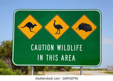 An Australian Wildlife Sign, depicting a kangaroo, an emu and an echidna, situated next to the Indian Ocean Road in Western Australia.