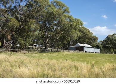 Australian woolshed in landscape