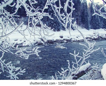 Austria, beautiful winter country landscape covered by white snow and the view of the running waters of a river through the frozen branches of a tree