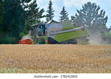 Austria, grain harvest of a wheat field with a combine harvester in Lower Austria