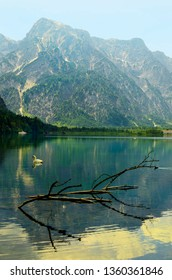 Austria, lake named Almsee located inmidst Austrian alps