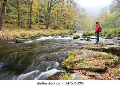 Niederösterreich, Austria - Oct, 2018: Boy stands on the bank of Kamp river and looks melancholy into the rapids of the natural streaming water, in the midst of primeval-like forest in autumn.