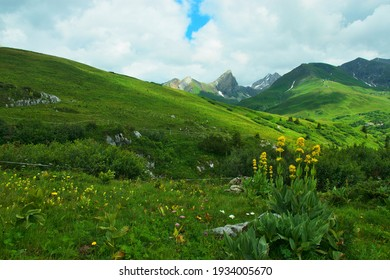 Austrian Alps - view of the Roggspitze from the road from Stuttgarter Hut near Zürs in the Lechtal Alps
