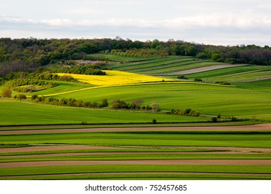 Austrian Fields in spring