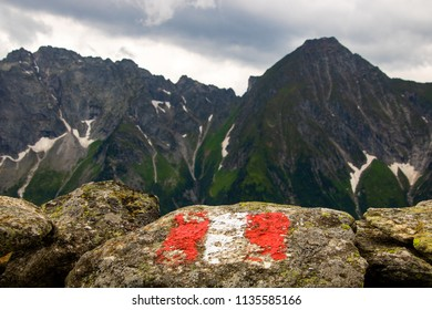 Austrian flag painting on a rock on the top of a mountain in the austrian alps