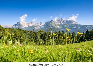 Austrian summer landscape, Kitzbuehel, Tyrol, Austria
