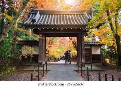 Autam seaaon in Konkai Komyoji Temple position Residents in Japan,People visit in Konkai Komyoji Kyoto Temple.