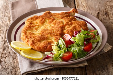 Authentic Italian food: veal Milanese with lemon and fresh vegetable salad close-up on a plate. horizontal