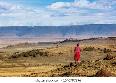 Authentic Maasai tribe member male standing in the middle of the Mara Triangle Conservency looking out over the beautiful rolling hillside land