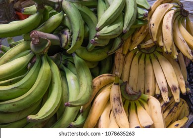 Authentic plantains, a banana variety for frying, of tropical South America, in Ecuadorian street market.