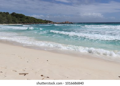 Authentic Seychelles nature - forest and the beach
