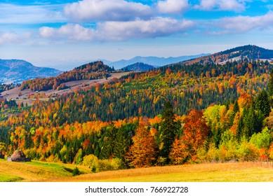 Autmumn landscape in Carpathian mountains