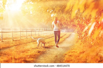 An autmun landscape with a young woman going for a walk with her dog on a sunny day