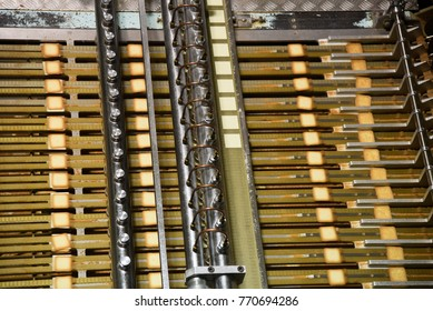 Automated running conveyor belt of the  food processing machine line in manufacturing plant: selected focus