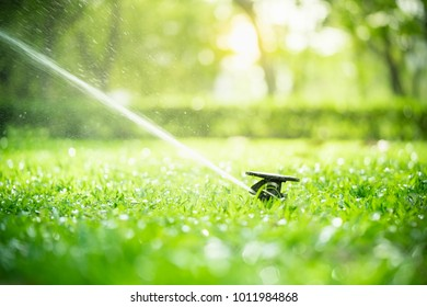 Automatic Garden Lawn sprinkler in action watering grass.