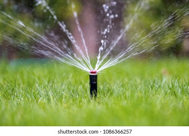 Automatic garden lawn sprinkler in action watering grass