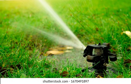 Automatic lawn sprinkler watering green grass. Garden, yard irrigation system watering lawn. Water saving or conservation from sprinkler system. Turf farm business. Sprinkler service and maintenance.