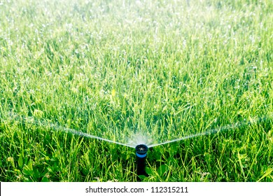 Automatic sprinkler watering green grass