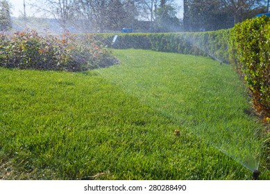 automatic watering of the lawn