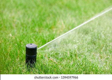 Automatic watering - sprinkler system. Sprinkler head spraying water on green lawn with bokeh backgound. Irrigation system -  technique of watering in garden. Lawn sprinkler spraying water over green