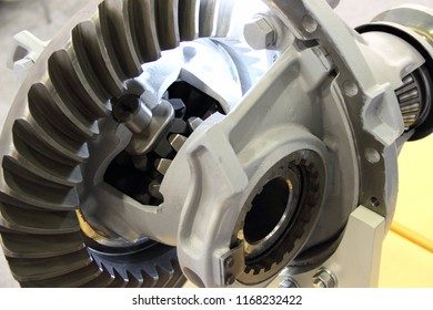 Automotive Hypoid transmission - planetary gearing, gear in section and pinion