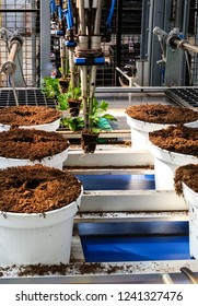 Autonomous flower potting robot machine