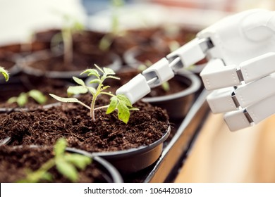 autonomous robot is gardening indoors, robot gardener with vegetables in a room, cyborg is trying to understand the life