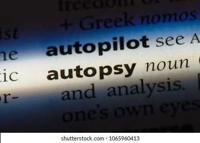autopsy word in a dictionary. autopsy concept.