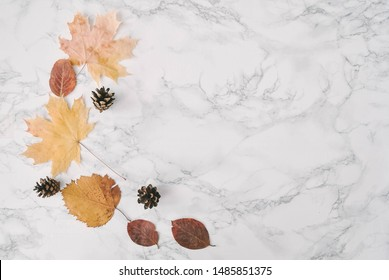 Autum composition on marble backgroun with leaves and cone