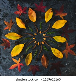 Autum. n leaves in mandala shape flat lay on dark background. Meditative zen concept