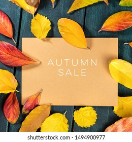 Autum Sale. Discount banner or flyer design template with vibrant autumn leaves on a brown kraft card, with a place for text
