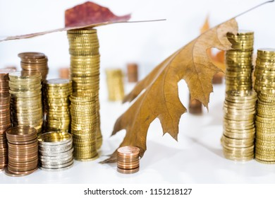 Autumn abstract photo. Yellow leaves with some coins. Isolated on white background.