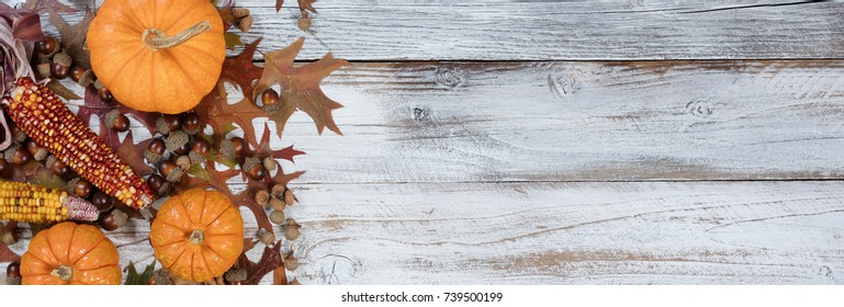 Autumn acorns, corn, pumpkins and faded leaves in flay lay view on rustic white wood with ample copy space