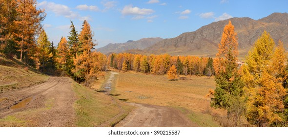 autumn, Altai Mountains, the valley of the river, unpaved roads, larch forest
