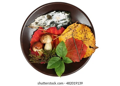 Autumn applique on clay plate, isolated on white background