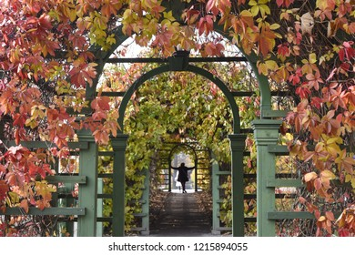 Autumn Archway at Kadriorg Palace - Tallinn, Estonia